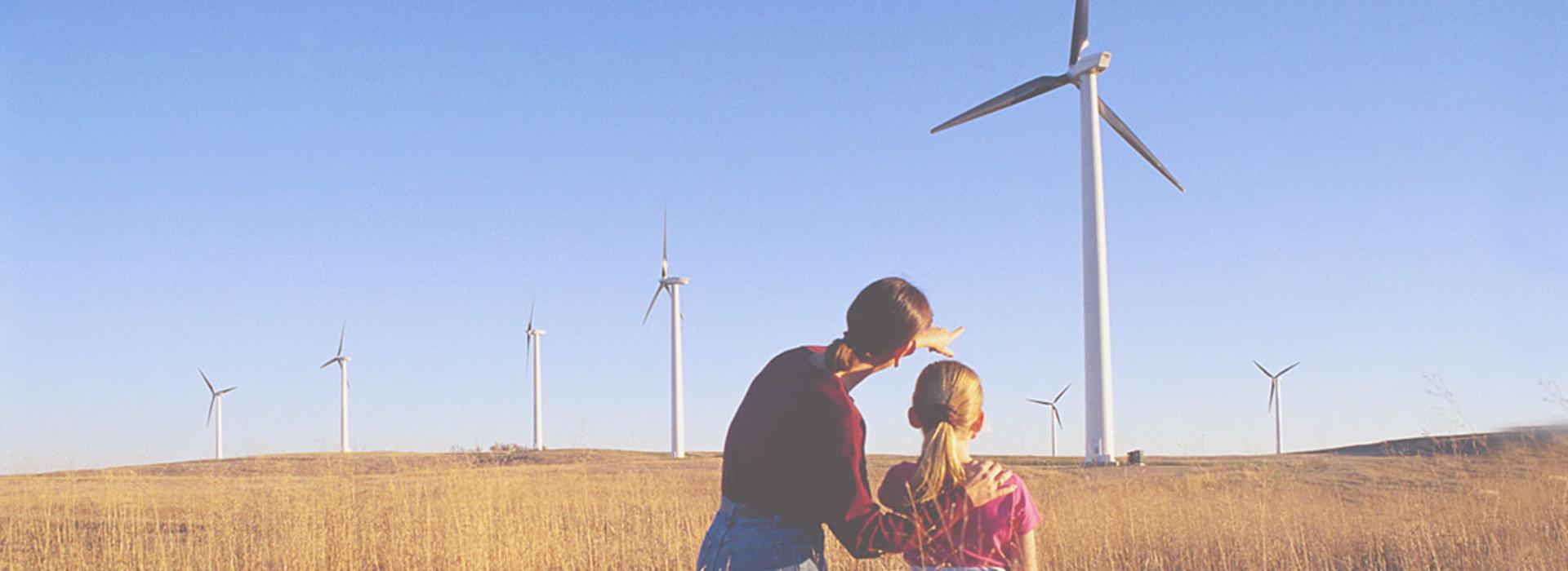 renewable-h700